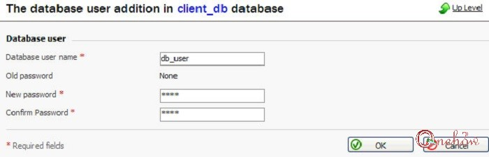 چگونه یک دیتابیس MySQL ایجاد کنیم