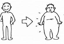 Photo of چگونه اصولی چاق شویم